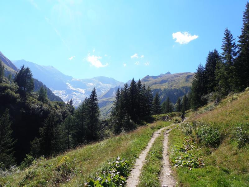 Nach dem ersten Anstieg aus dem Fuscher Tal folgte die Hirzbachalm.